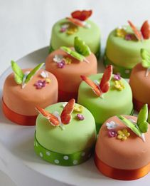 Summer Butterfly Mini Cakes