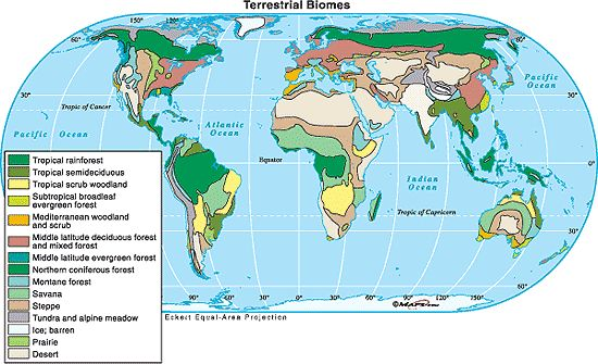 south america natural resources map - Google Search | Globe ...