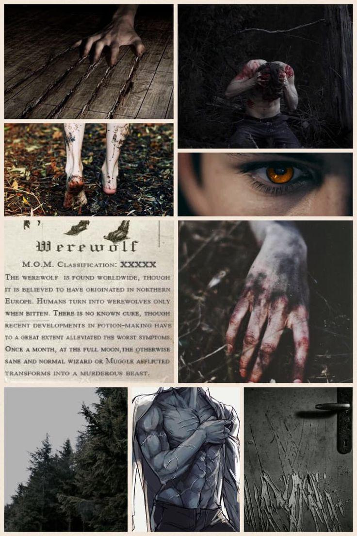 Werewolf Aesthetic - Erwin Smith #werewolf #aesthetic #
