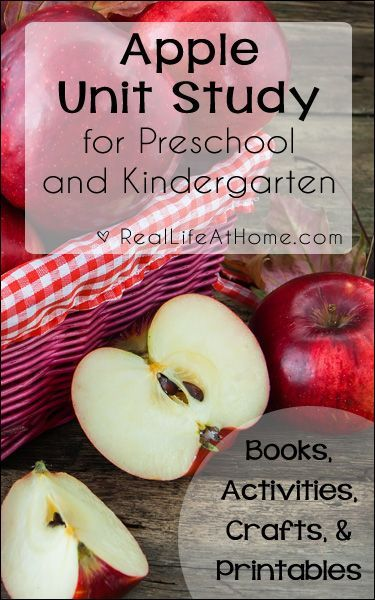Apple Unit Study for Preschool and Kindergarten {Includes ideas for books, activities, crafts, and printables} | Real Life at Home