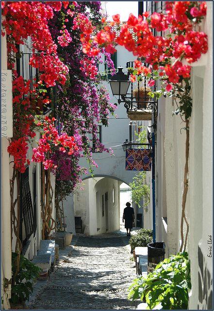 Calle en Cadaqués, Catalunya, Spain: Favorite Places, Street, Beautiful Place, Catalonia, Travel, Spain, Flowered Passage