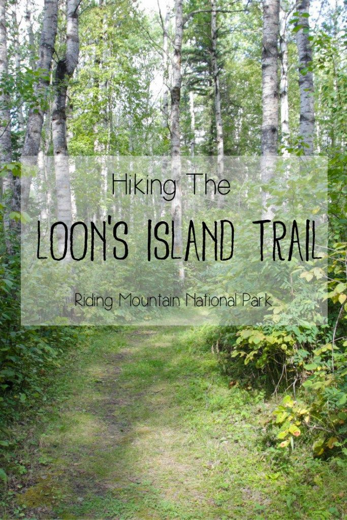 Hiking the Loon's Island Trail in Manitoba's Riding Mountain National Park | The…