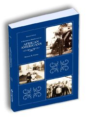 essays on african american culture
