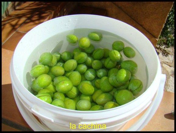 Olives vertes coupées à l'aneth sauvage Bientôt fin septembre il sera possible de commencer à faire les olives cassées dans le Var. Bien sur il existe la cersion classique, ci-dessous Voici une version sensiblement identique des olives cassées ICI au...