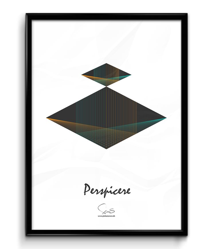 Perspicere  ( A2 42x59,40 Cm )