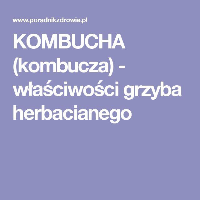 KOMBUCHA (kombucza) - właściwości grzyba herbacianego
