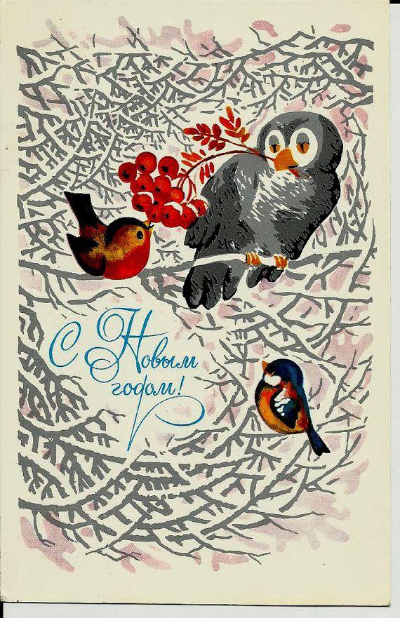 Bullfinch  Birds  Vintage  Russian Postcard Happy by LucyMarket, $3.99