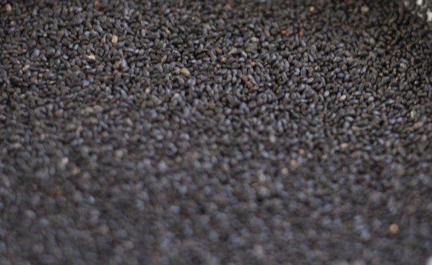 10 Hidden Benefits of Basil Seeds (Tukmaria or Sabja Seeds)