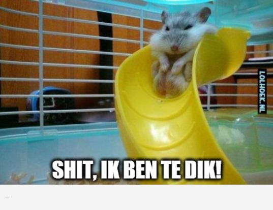 Te dik om te spelen - LOLHOEK | Nederlandse Memes & Rage Comics