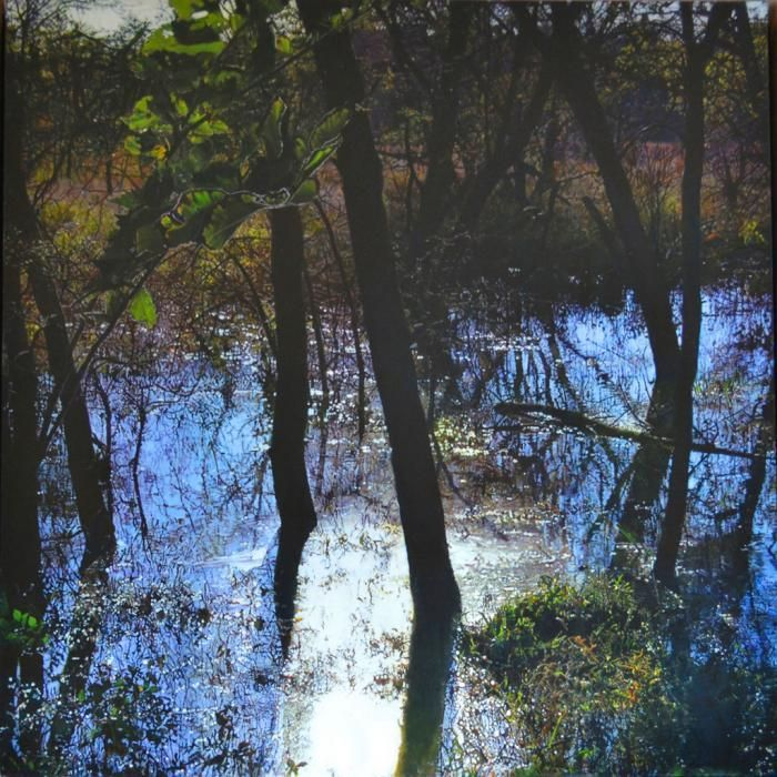 Wet and Bright, landscape painting by James Van Patten