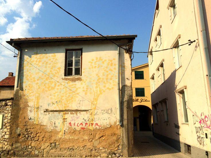 Bosnia, incontri da autostop | Talk 'n tea
