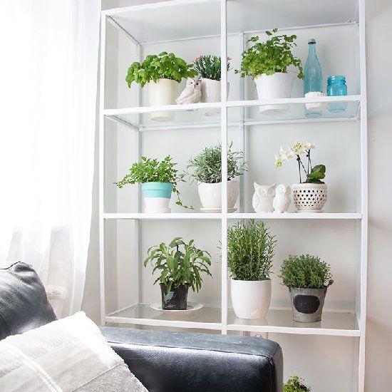for plants spray painted an ikea vittsjo shelf white. Black Bedroom Furniture Sets. Home Design Ideas