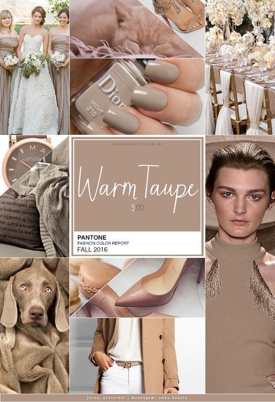 pantone color warm taupe