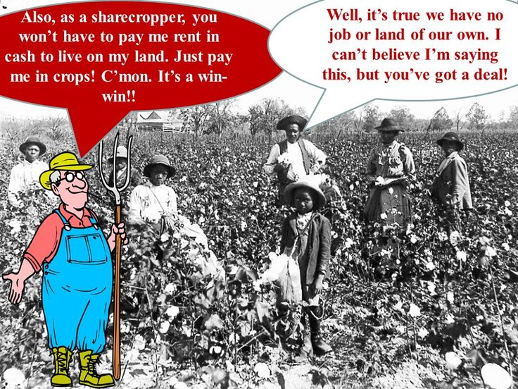 """Sharecropping and Jim Crow Laws PowerPoint Presentation Key Terms and People: Radical Republicans """"40 Acres and a Mule"""" Sharecroppers Election of 1876 Rutherford B. Hayes Samuel Tilden House of Representatives Poll Taxes Literacy Tests Grandfather Clause Jim Crow Laws Plessy v. Ferguson """"Separate but Equal""""  http://mrberlin.com/sharecroppingandjimcrowpowerpointpresentation.aspx"""