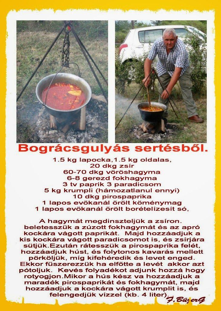 B.Guszti_Bográcsgulyás+szüret+2009..jpg (730×1024)