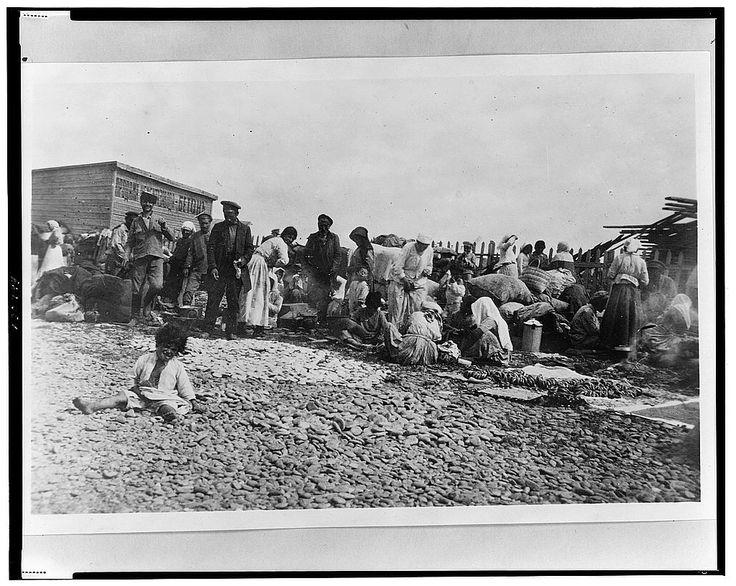 Armenian refugees on Black Sea beach with household possessions, Novorossiĭsk, Russia, 1920 - Floyd, G. P., photographer