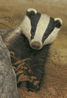From #BadgersOverload Pinterest board, @BadgerMaps