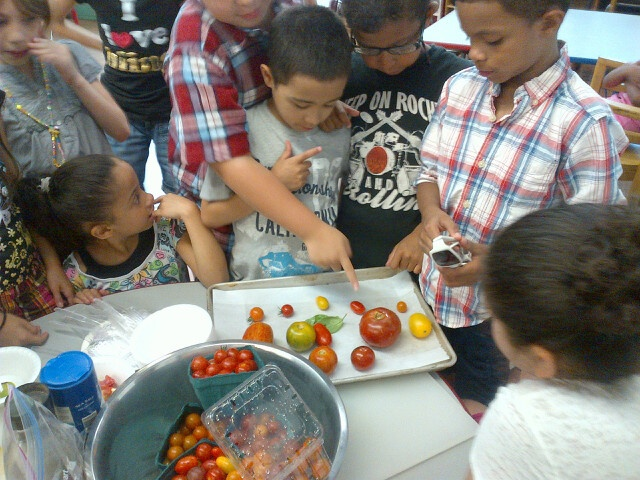 Photos from pilot of our Learn Your Fruit and Vegetables program taking place in NY!