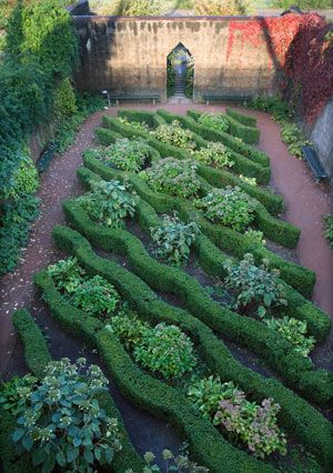 English boxwood AND hydrangea: Gardens Ideas, Hedges Gardens, Landscape Design, Gardens Design Ideas, Hydrangeas Gardens, Formal Gardens, Gardens Art, Gardens Destinations, Knot Gardens
