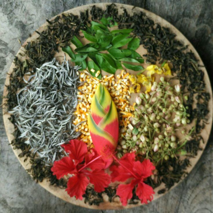 white tea & Herbal
