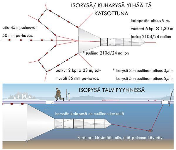 Isorysä 3,0 m / 30 mm - Kivikangas