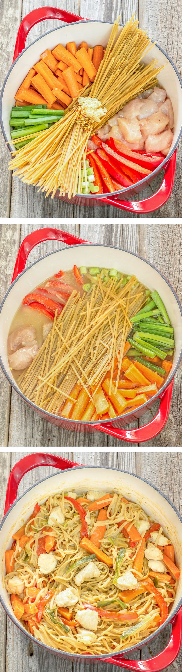 One Pot Wonder Chicken Lo Mein is simple. Just put uncooked pasta, chicken, veggies, broth, and seasoning into a pot, simmer, and it creates a yummy sauce. Pinned over 684k times.