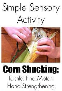 Sensory and Fine Motor Activity of the Week: Corn Shucking -repinned by @PediaStaff – Please Visit ht.ly/63sNtfor all our pediatric therapy pins