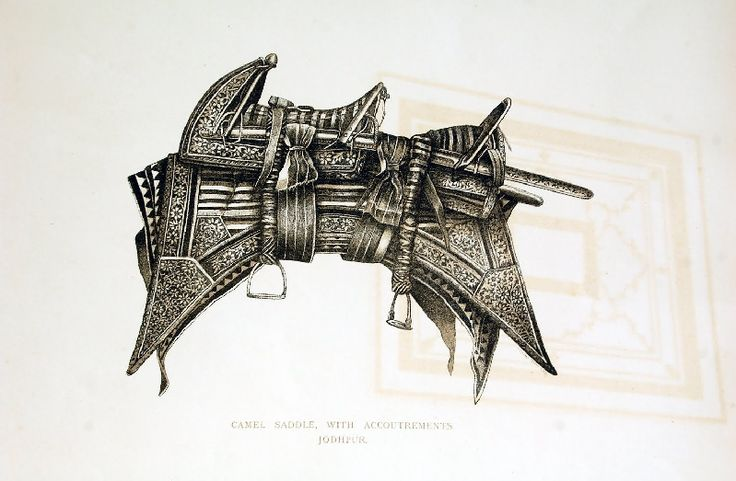 Black and white print of camel saddle with Accoutrements.  #camel #saddle #accoutrement #ancient #vintagestyle #heritage #museum