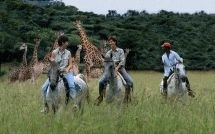 Pakamisa Private Game Reserve - Activities: Daily horse rides for novice and experienced riders. Arabian horse stud, game drives & bush walks, archery, clay target shooting, 8 elegantly decorated villas. Malaria- free private game reserve.