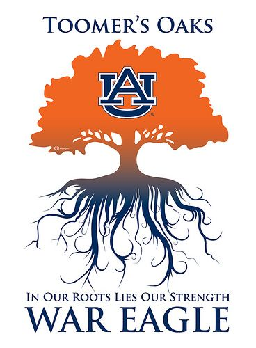 WAR EAGLE, the trees are getting cut down this weekend..sad day in college football tradition! Stupid Alabama fans