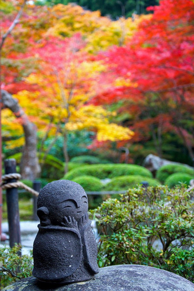 How To Plant A Japanese Inspired Garden Part 68