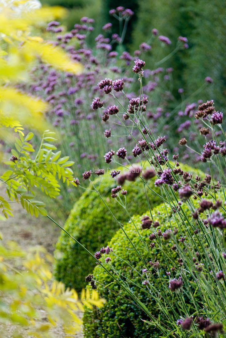 Julie Dansereau | Garden Photographer's Association