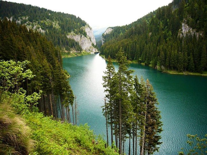 Bolboci Lake, Bucegi, Romania