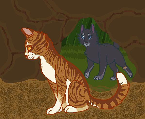 Wind Warrior Cats