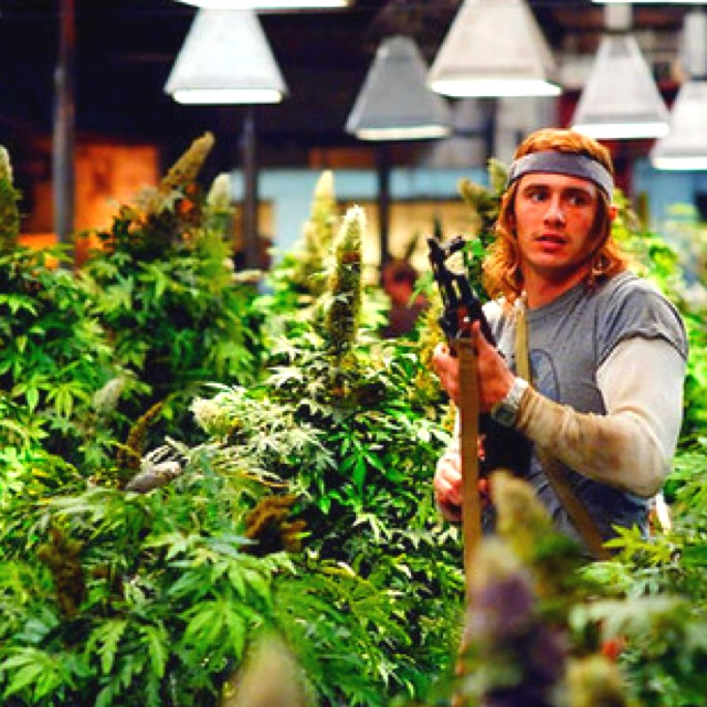 James Franco- Pineapple express