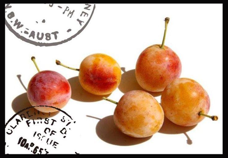 【さて、このフルーツは?】Do you know mirabel?