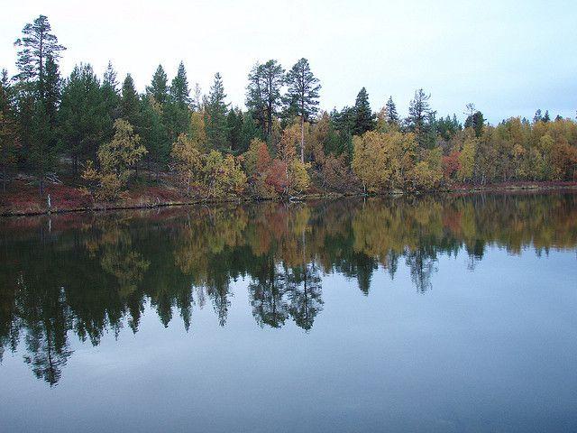 autumn fishing | Flickr - Photo Sharing!
