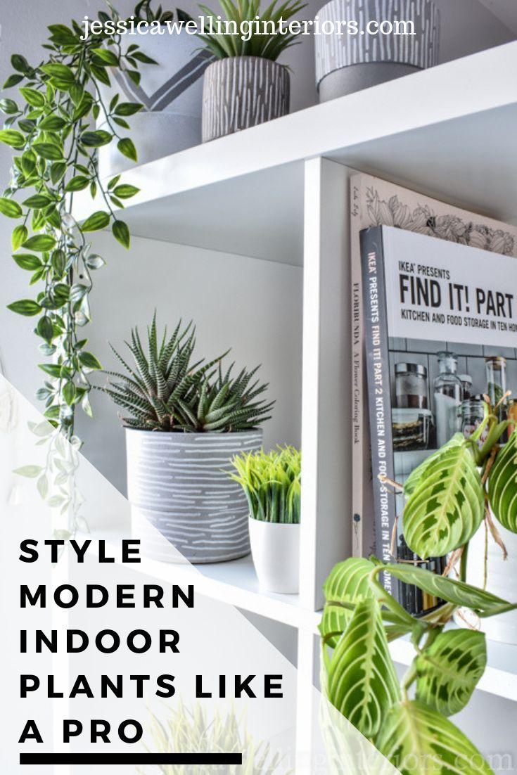 How To Style Indoor Plants 6 Designer Tips In 2020 Bedroom Plants Farmhouse Style Lighting Indoor Plants