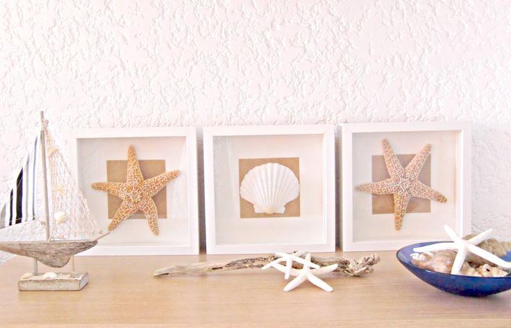 Vicky's Home: Diy Cuadros de Conchas y estrellas de mar / Diy Shells and Starfish