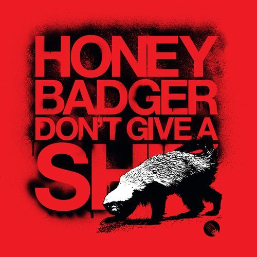 Honey badger dont give a shit - photo#37