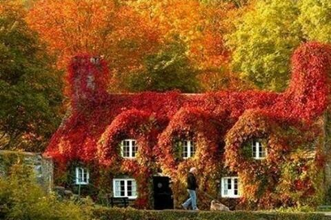 Fairy Tale Cottage, England