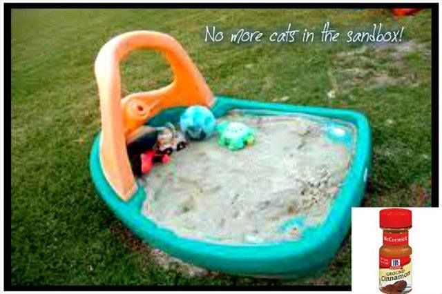 Cinnamon in the Sandbox--- Did anyone else know this????  LOVE recipes!! CLICK and FOLLOW ME! https://www.facebook.com/hjt77  Now that its getting warmer, the kids are going to want to play in the sandbox.  Cinnamon in the Sandbox keeps the bugs away! I knew cinnamon repelled ants... but I never thought of this! Brilliant! I've also heard it will keep the cats out.  Follow me to see all my AMAZING posts -- www.facebook.com/hjt77