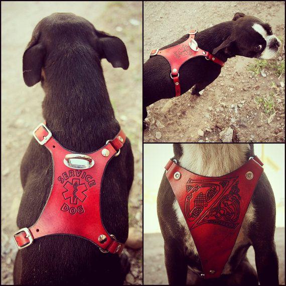Leather Dog Harness Custom Leather Hand Tooled Dog por Exsect
