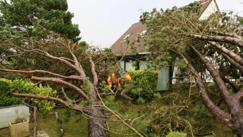 ALERTE ORANGE - Des vents violents balayent le Nord et le Pas-de-Calais http://www.lavoixdunord.fr/76645/article/2016-11-19/des-vents-violents-balayent-le-nord-et-le-pas-de-calais