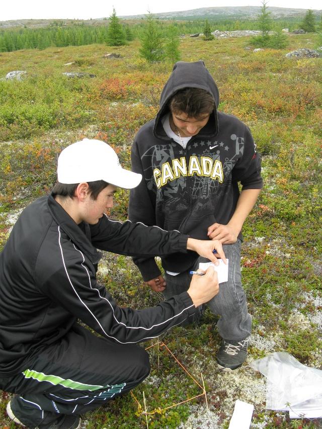 Étudier le nord / Pour entendre et découvrir des chercheurs qui n'ont pas froid aux yeux! 15 février UQTR