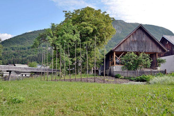 Alpine Barn Conversion by Ofis arhitekti_11