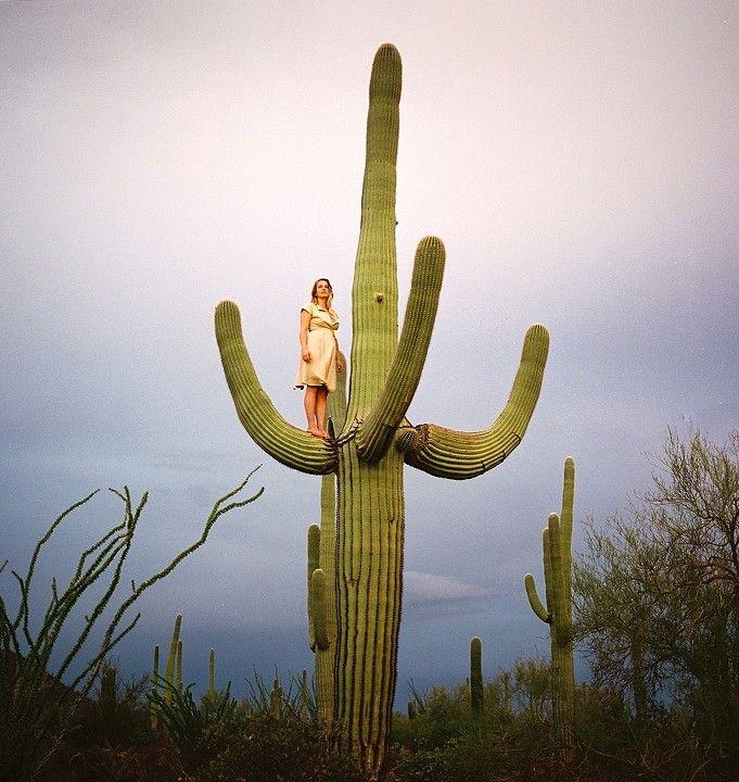 Untitled (Woman on Saguaro)