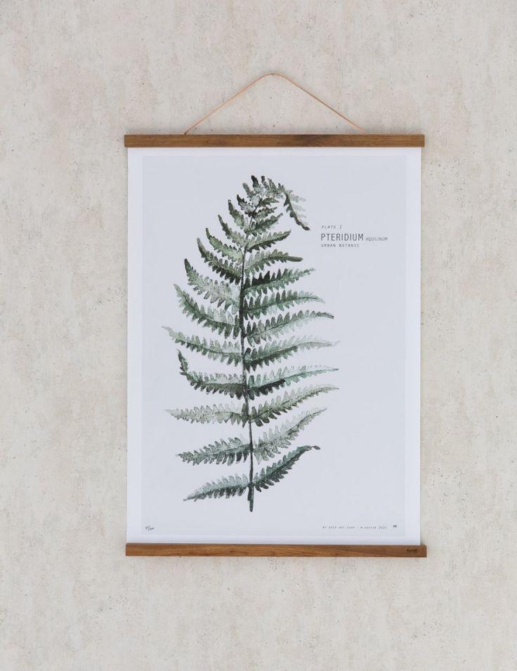 Urban Botanicals Fern Print - My Deer Art Shop
