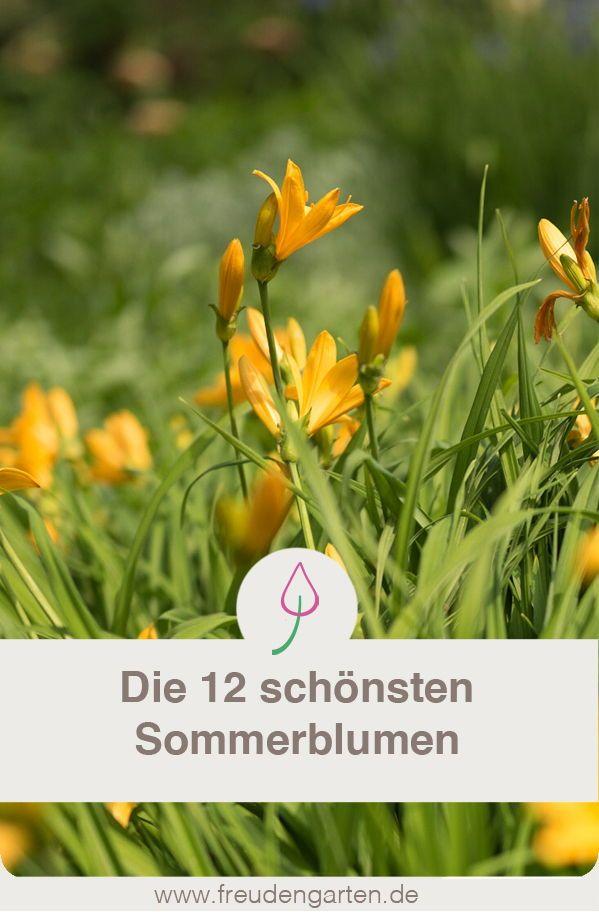 2105 best Garten Ideen - Gruppenboard images on Pinterest - garten blumen gestaltung