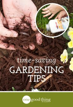 6 Gardening Tips That Will Save You Time And Energy - One Good Thing by Jillee